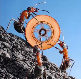 Hjulshop Myrer flytter hjul 275x270 1
